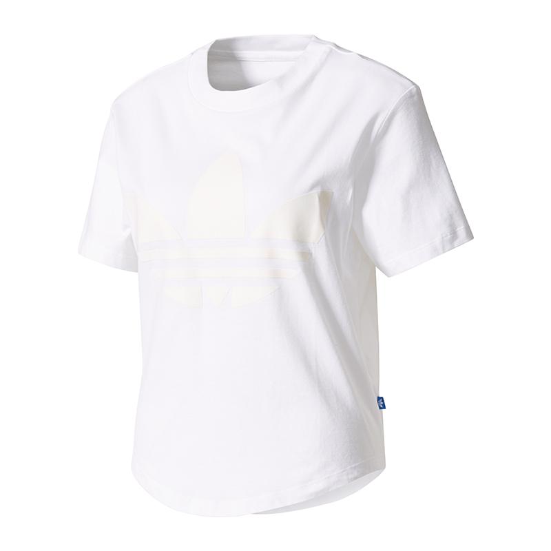 adidas Originals ED7483 T Shirt Frauen: : Bekleidung