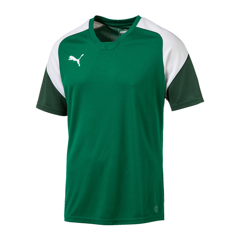 4454234216a PUMA Esito 4 Training Top Green White F05 L for sale online   eBay